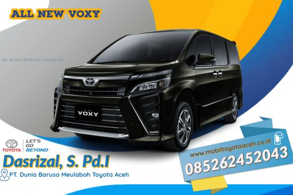 All New Voxy